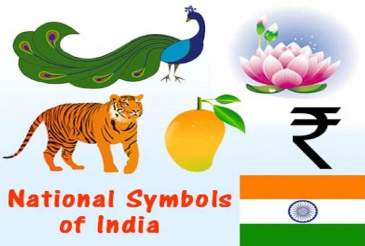 जानिए भारत के राष्ट्रीय प्रतीकों के बारे में, बड़ा रोचक है उनका इतिहास और अर्थ